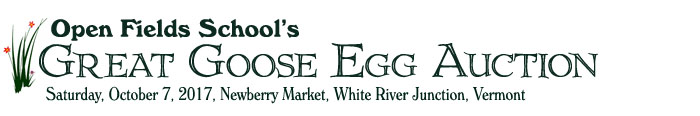 Open Fields Great Goose Egg Auction 2017